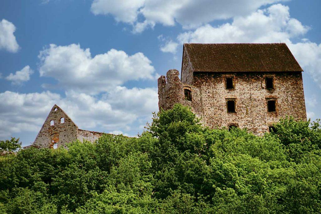 zamek swiny