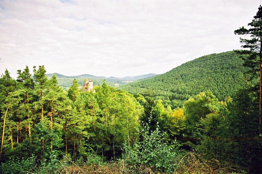 zamek berwartstein