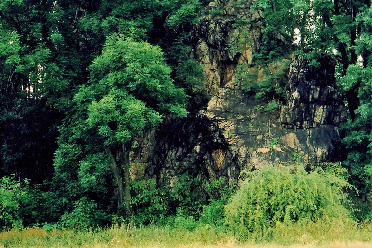 Zamek Podskale
