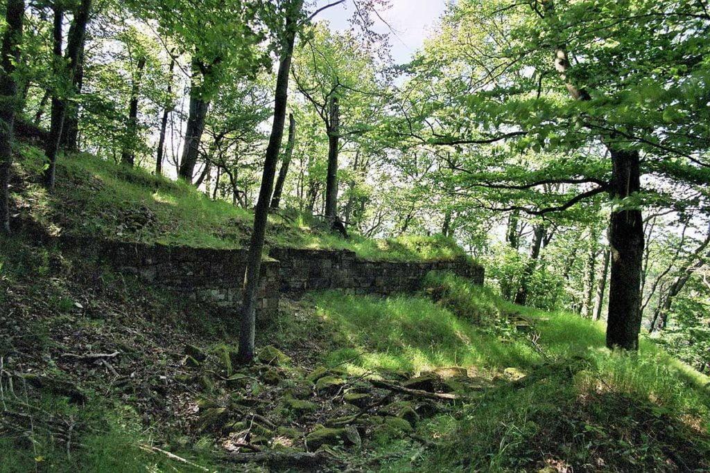 Zamek Hohenfels w Pfalz