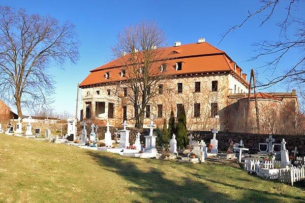 pałac w borowie wielkim