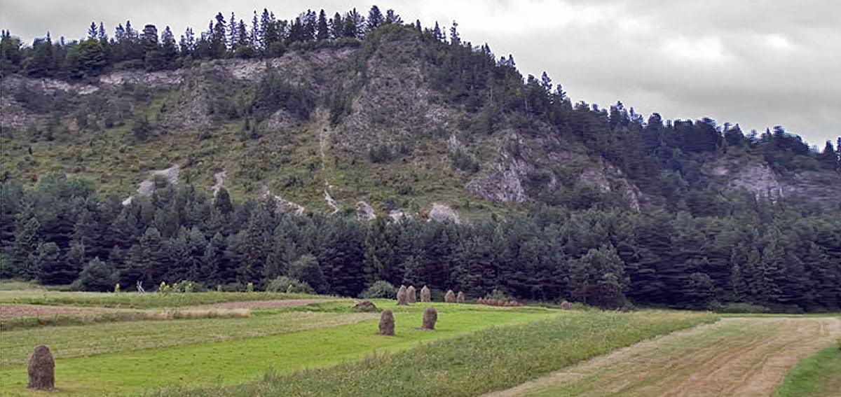 Zamek Cisowiec