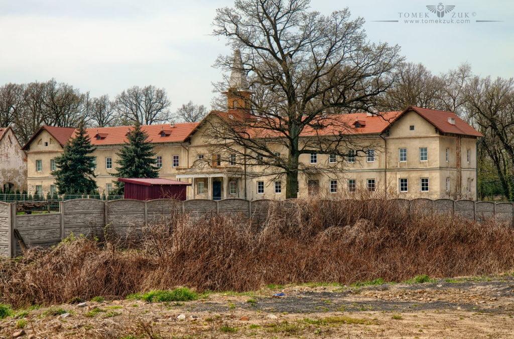 Pałac w Dzietrzychowicach