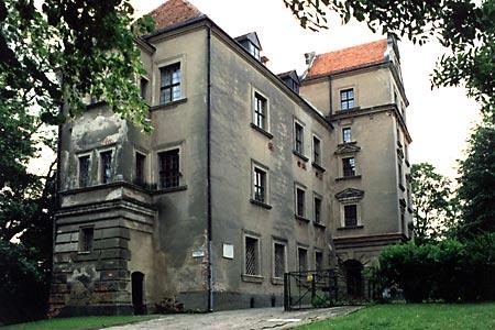 Zamek w Płotach