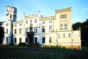 Pałac w Drwalewicach