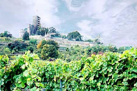 Zamek Wachtenburg